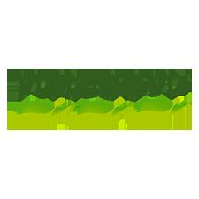 Nateen_logo